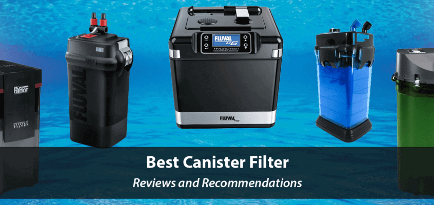 Best Canister Filters for Aquariums 2017