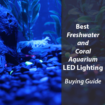 Best Freshwater and Coral Aquarium LED Lighting 2017